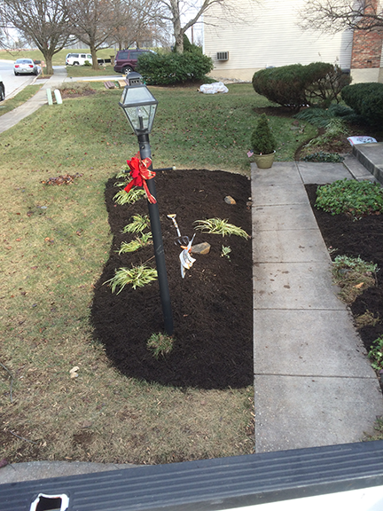 mulch-bed-with-plants-and-light-post