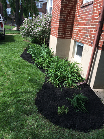 new-mulch-bed-along-side-of-home