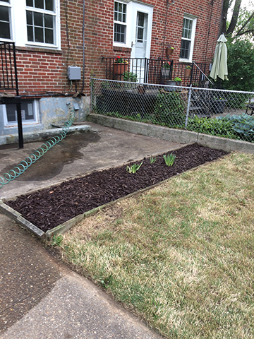 mulch-bed-after-exterior-cleanup